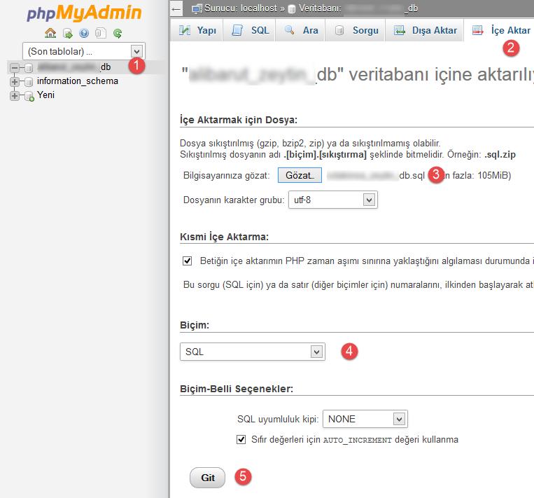 phpMyAdmin ile veritabanını sunucuya gönderme