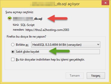 SQL dosyasını kaydetme