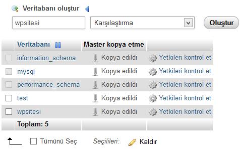 phpMyAdmin veritabanı yaratma