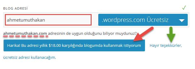 wp-blog-acma-adres-alma