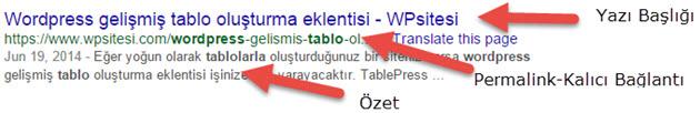 google-arama-sonucu-ornegi