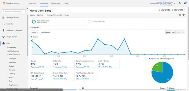 Google-Analytics-ornek-sayfa