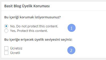 blog-uyeligi-icerik-koruma-ornek