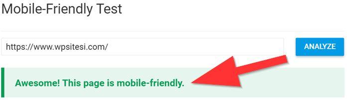 WPsitesi'nin test sonucu, mobil olduğunu gösteriyor