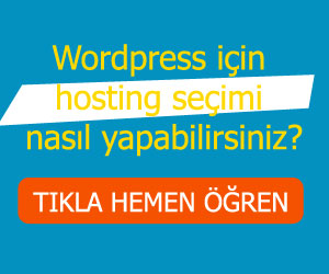 Wordpress Hosting Seçimi